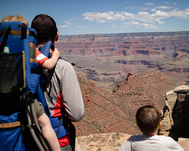 Dad overlooking Grand Canyon with Kids