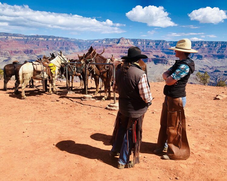 People waiting for mule rides at the grand canyon