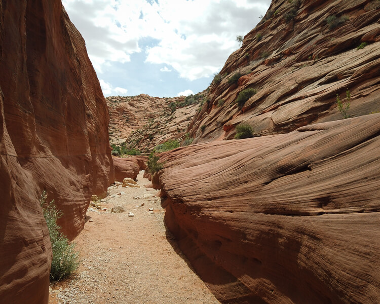 Wire Pass slot canyon ends near the entrance to Buckskin Gulch